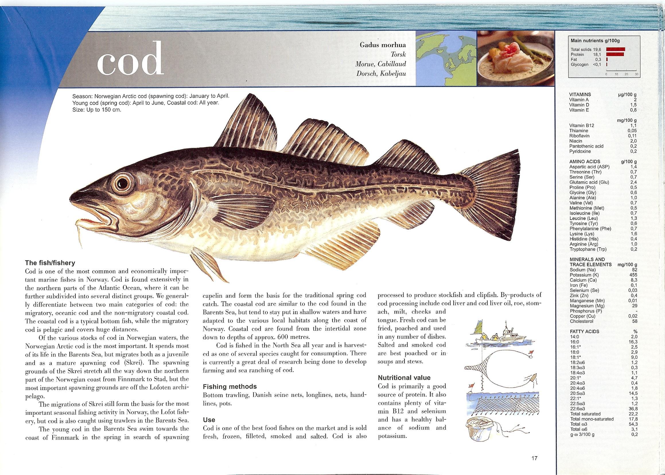 stockfish_whole_cod.jpg